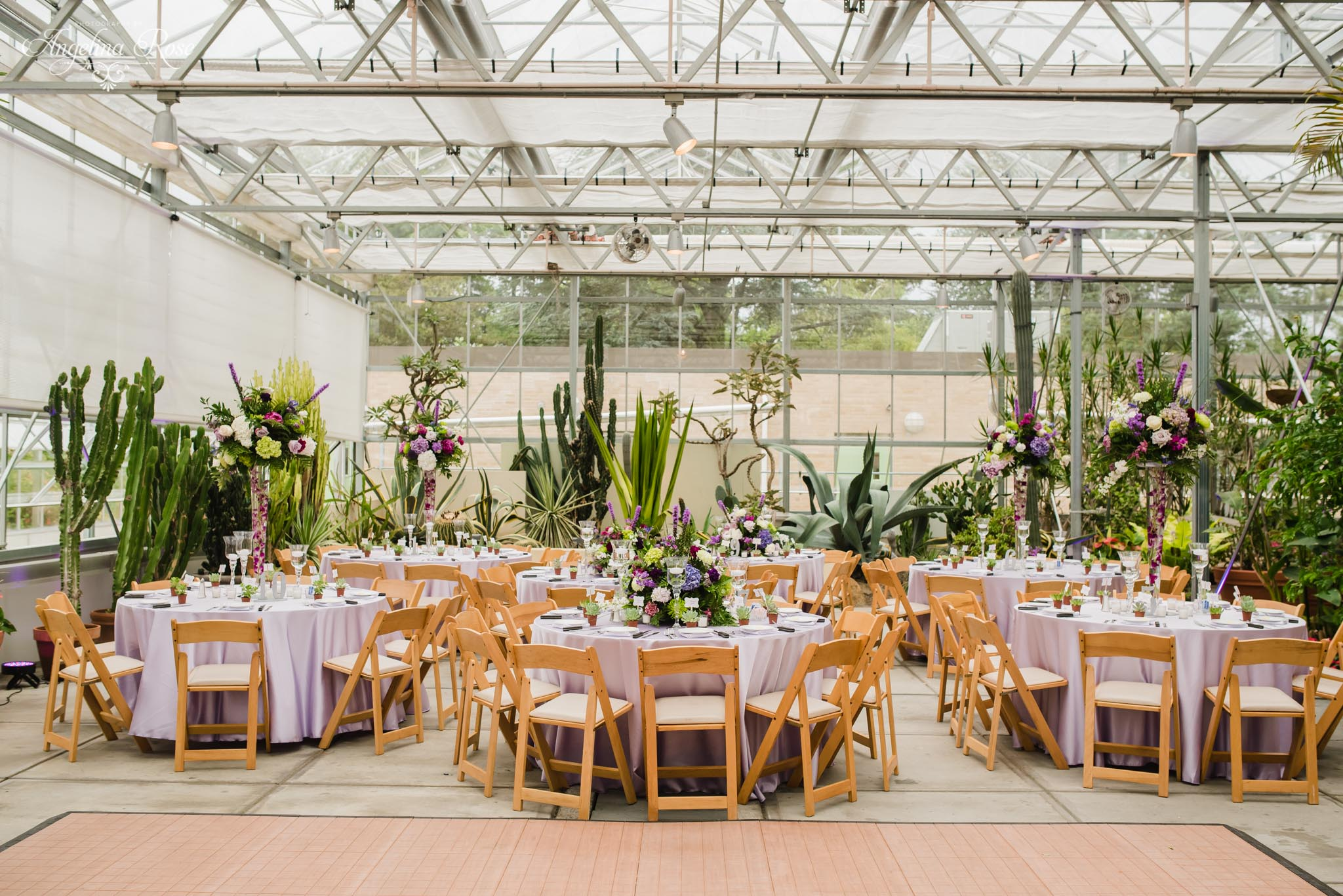 Roger Williams Botanical Garden Wedding, Providence RI