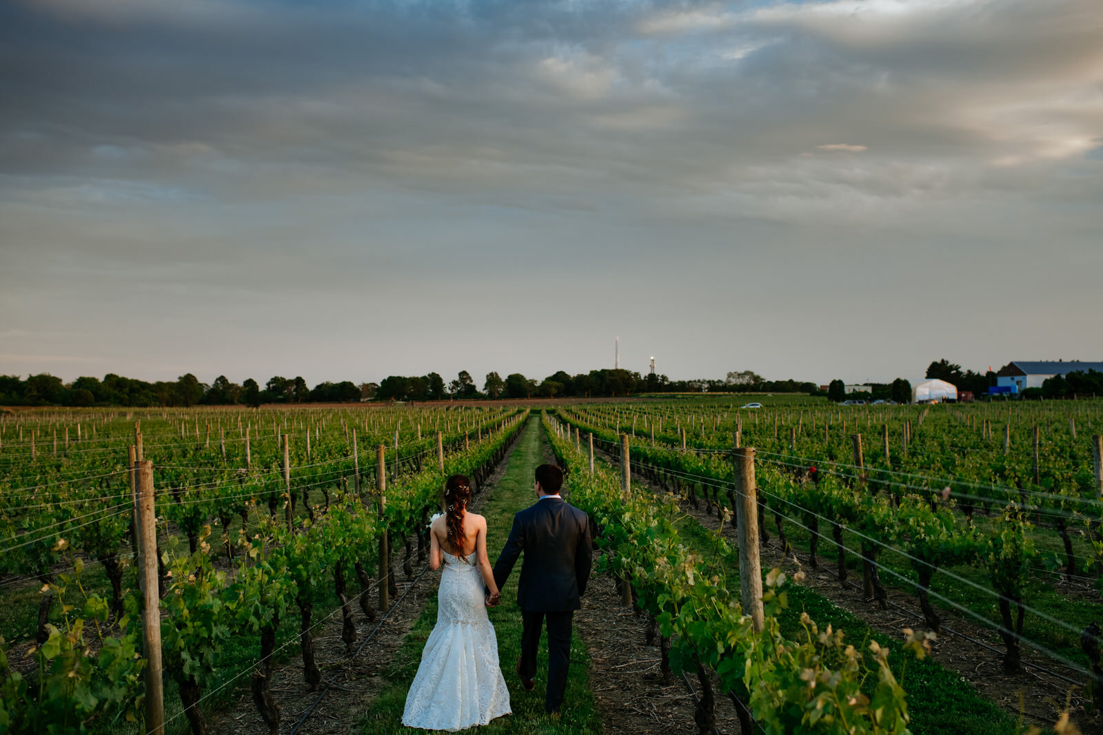 boston wedding photographer newport vineyards